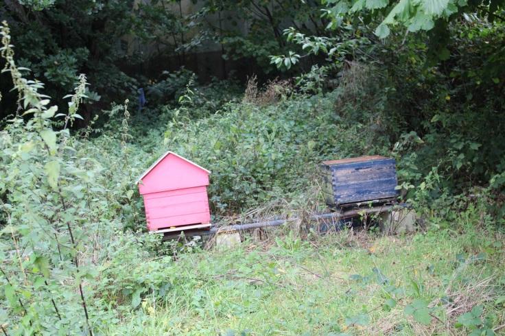 Les ruches dans les jardins de la Posterie à Courcelles.