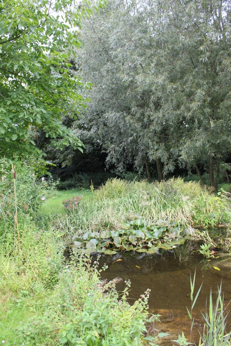 Une mare dans les jardins de la Posterie à Courcelles.